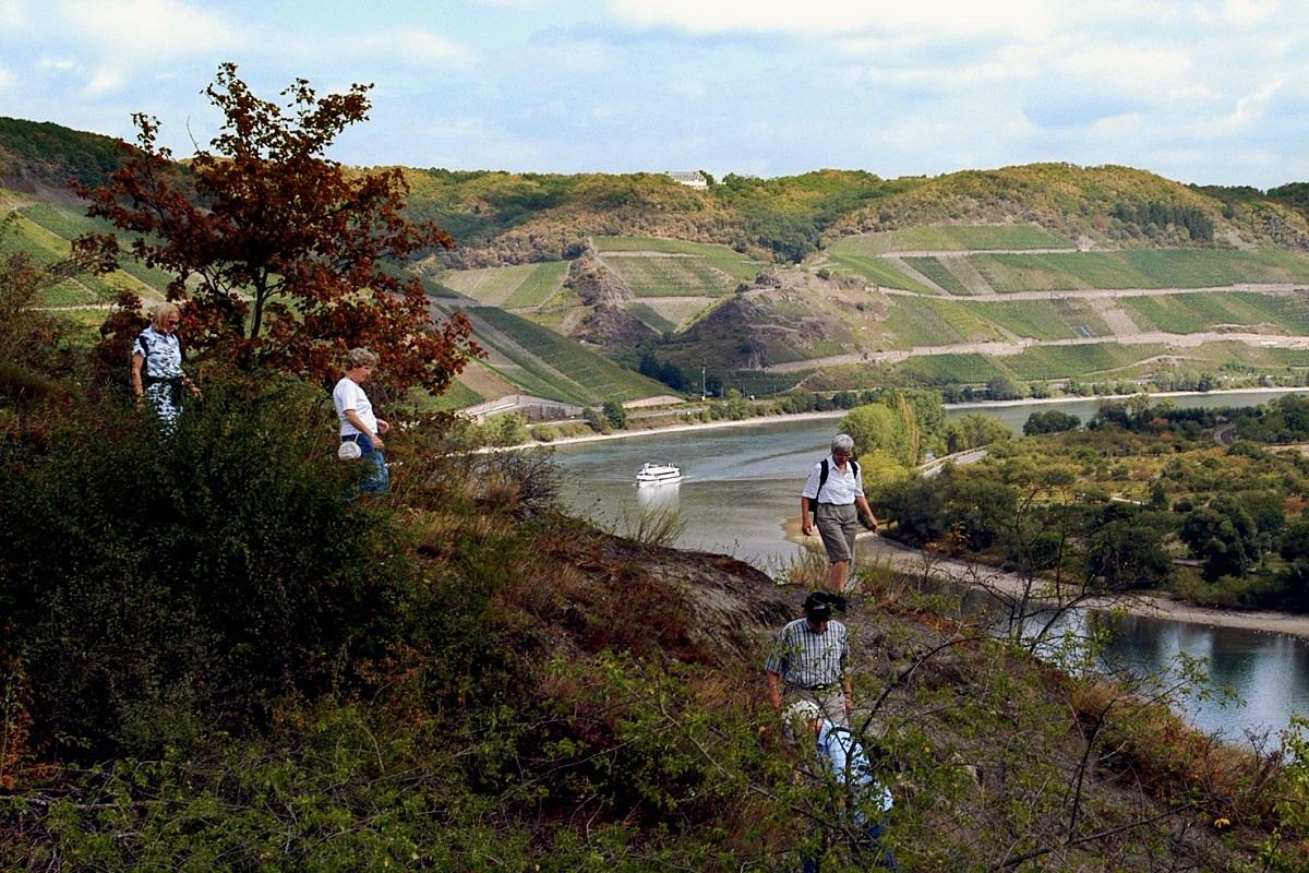Klettersteig Rhein : Der mittelrhein klettersteig bei boppard am rhein erweiterte tour